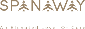 Spanaway Dental Wellness logo